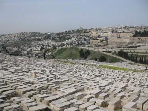 Unikátní projekt na zmapování náhrobních kamenů na Olivové hoře pokračuje