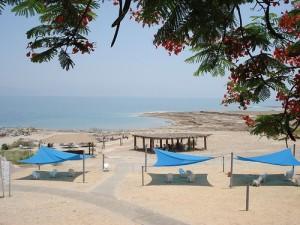 Mineral beach, Mrtvé moře (foto: Sam Renaut, licence: CC BY-SA 2.0)
