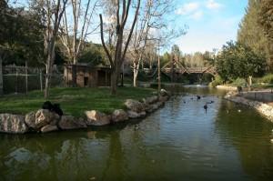 Biblická Zoo v Jeruzalémě